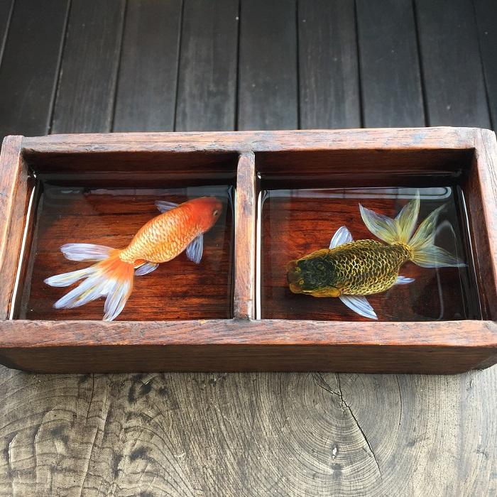21-trehmernye-rybki