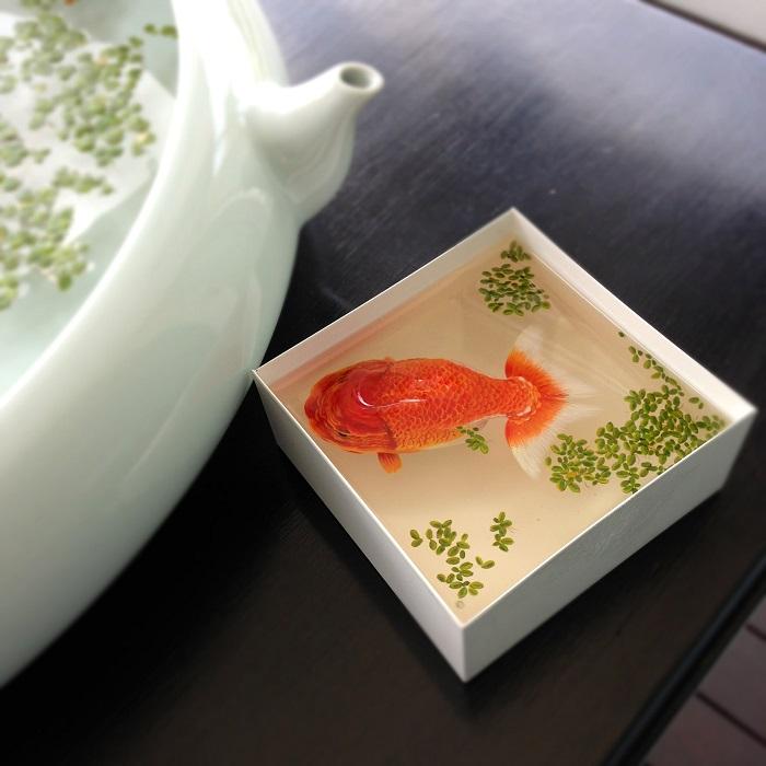 5-3d-risunok-rybki-ot-kenga-li