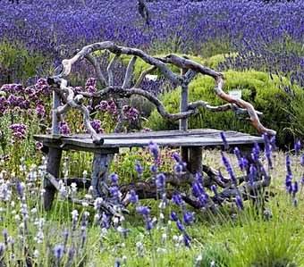 садовая скамейка среди цветов на даче