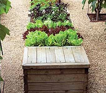садовая скамья прямо на грядке