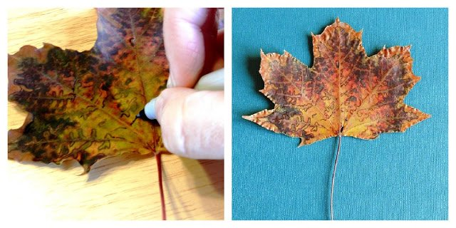 Сушеные крашенные листья своими руками