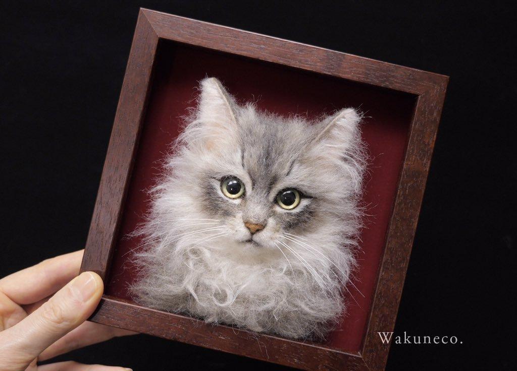 реалистичный котик