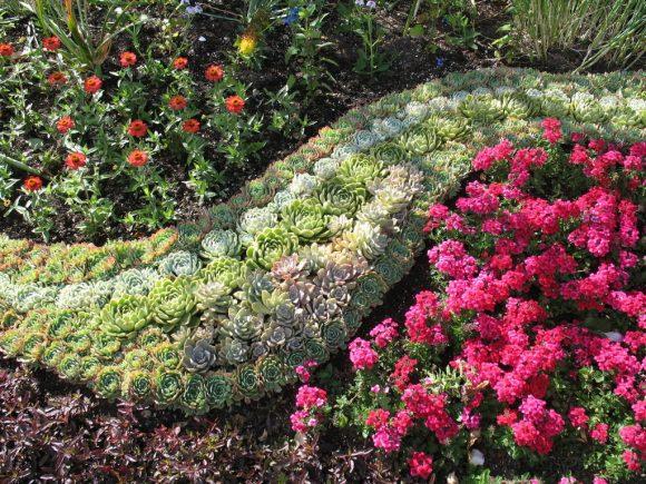 Цветочная композиция с каменной розой