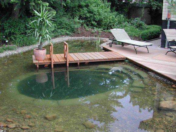 Дачный пруд для купания