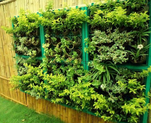 Зелёная композиция на дачном заборе