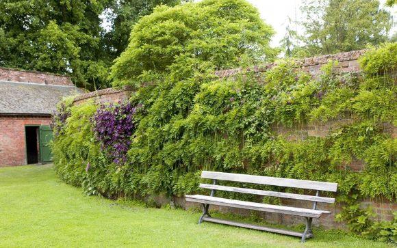 Озеленение дачной ограды подвесными композициями