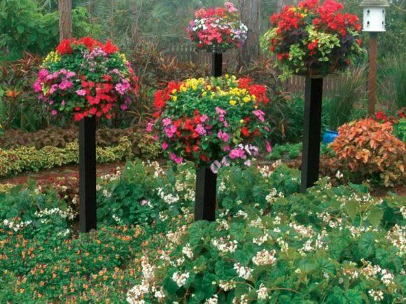 Вертикальные клумбы, имитирующие цветущие деревья