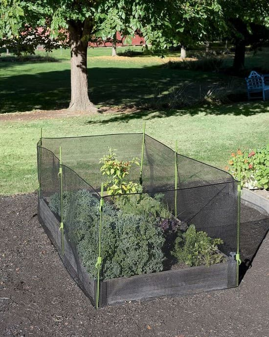 идеи для огорода и сада